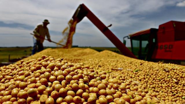 阿根廷经济或遭新困境 关键时想到人民币和大豆