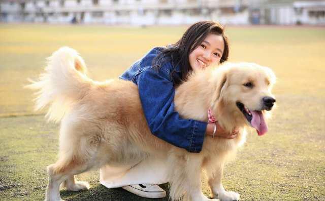 描写小狗的外形_描写小狗外貌的优美语句-