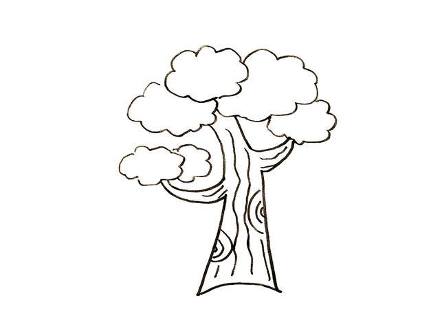 親子簡筆畫大樹素材|10種不同大樹卡通畫,簡單好畫