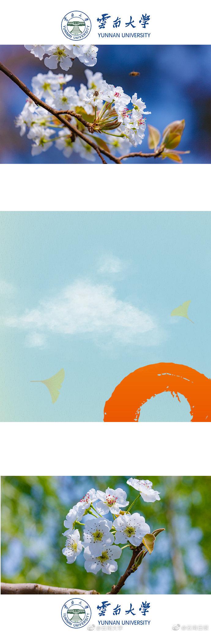 【网易态度公开课】九阳司振明:如何悦享品质生活