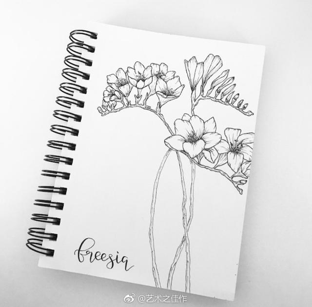 ����yno9�-yol_手绘花卉 ,花卉黑白线稿,艺术之佳作