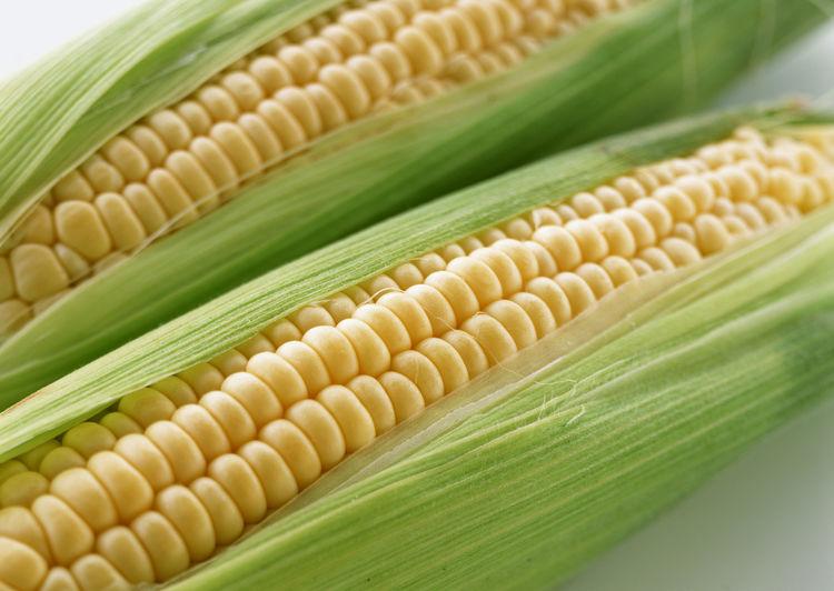 生活资讯_生活资讯:玉米很好,但不是每个人都能吃