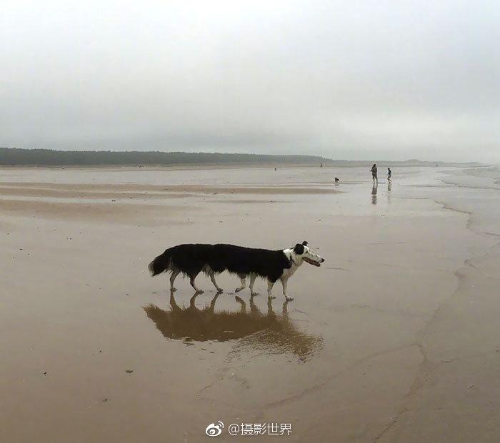 玉樹藏族自治州