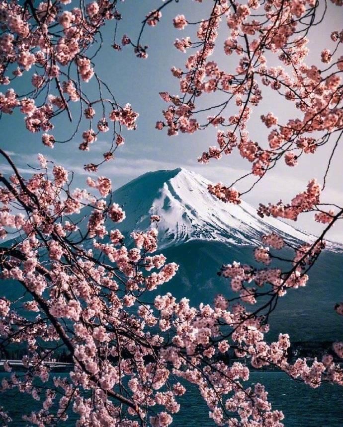 富士山,过年出行好去处
