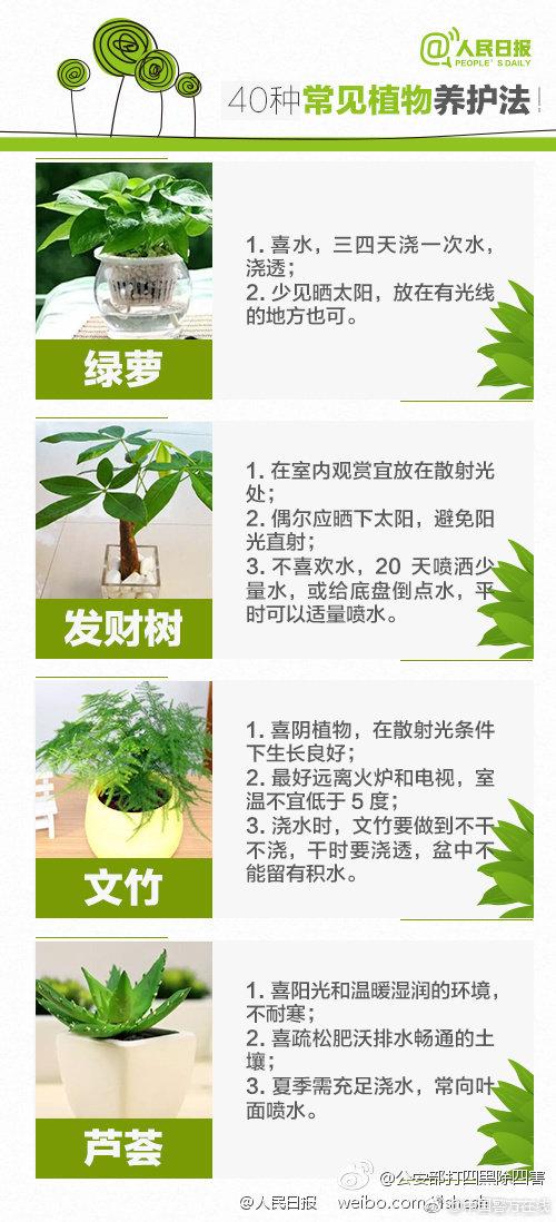 他虽然只有34岁 却已在袁隆平身边种了10年水稻