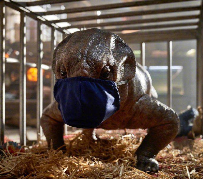 侏羅紀世界3導演宣布拍攝暫停 因新冠疫情影響