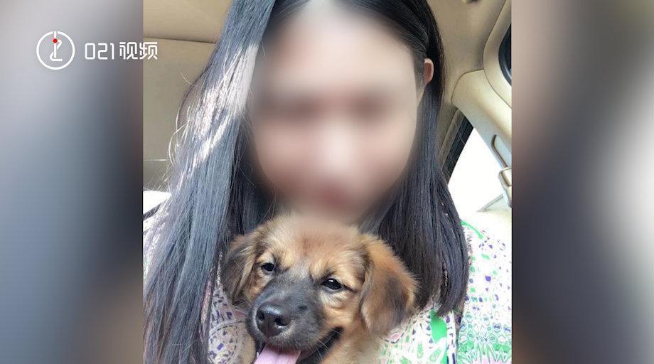 上海杀妻焚尸案发现场回访:上海杀妻焚尸案爱犬为救主冲入火海