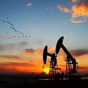 历史罕见负油价 官方调查结果来了