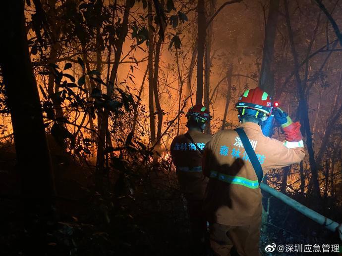深圳南山区大南山发生山火:明火已灭正调查起火原因