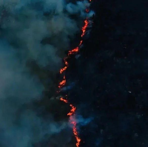 突发森林大火,600余名官兵火速增援