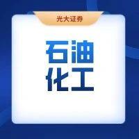 """【恒力石化(600346.SH)】""""大炼化+可降解塑料""""双龙头成长空间广阔,公司估值处于历史低位——跟踪报告(赵乃迪/吴裕)"""