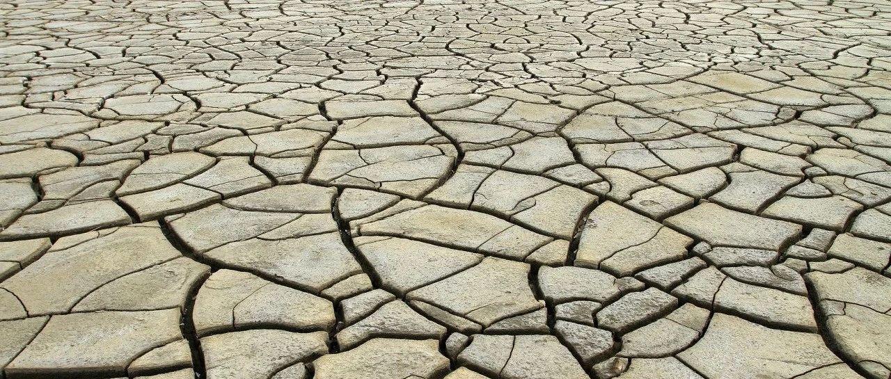 央行紧急加息,通胀率爆表,全球农产品又要飙?