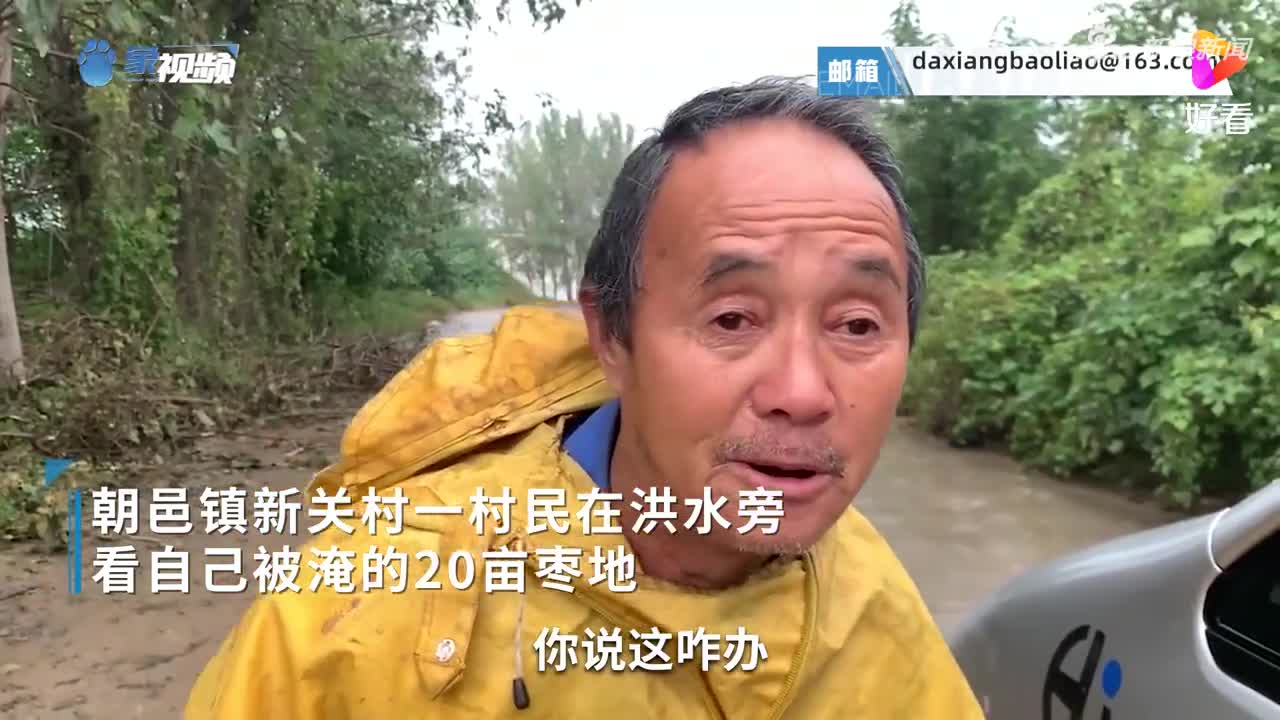 心酸!陕西大荔县6旬老汉看自家20亩枣地被淹红了眼眶