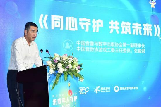 中国音像与数字出版协会第一副理事长、中国音数协游戏工委主任委员张毅君