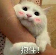 信息時報 記者 郭蘇瑩 通訊員 李麗云 豐茂圣