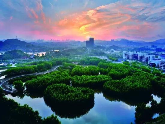 大亚湾红树林公园_惠州大亚湾红树林公园一期年底建成 _惠州频道_新浪广东_新浪网