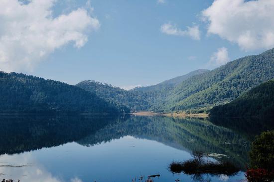 """广汽丰田""""多重效益森林恢复项目""""为恢复森林生态系统可持续发展提供动力"""