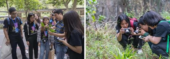 郑老师带领大学生在红花湖公园进行生物多样性考察