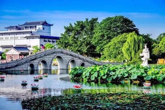 六月广西最美的地方!去贵港赏花爬山吃荷花美食吧