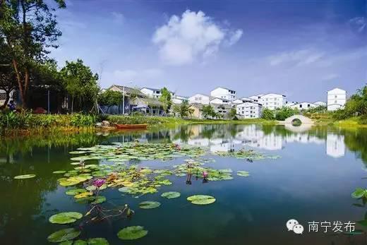 """南宁以绿色发展引领乡村振兴 良好生态变""""聚宝盆"""""""