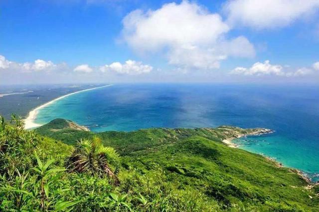 专家学者为海南发展育种产业建言献策:以特制胜