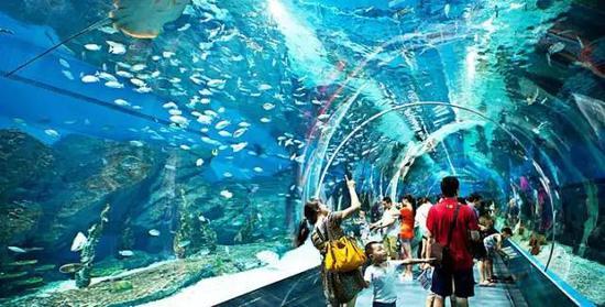 武汉市海洋公园_过年最新游玩攻略:武汉这些地方免费(图)_新浪湖北_新浪网