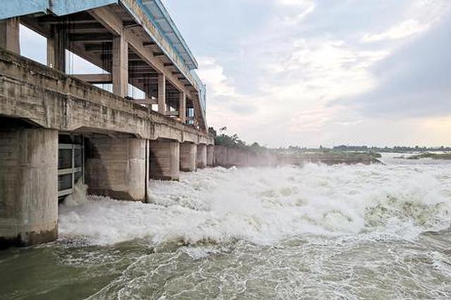 富河水位超歷史最高 陽新防汛應急響應升至Ⅰ級