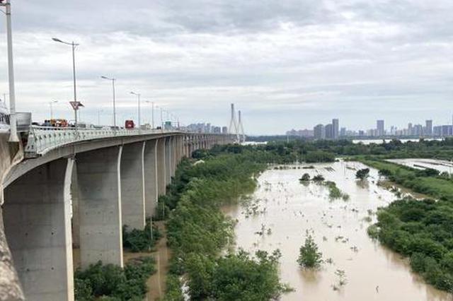 長江武漢段水位達歷史第4位 天興洲已實施扒口行洪