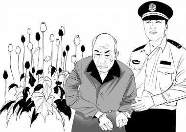 荥阳警方查获一起非法种植罂粟案 违法行为人被拘