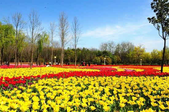 绿博园问花节将于3月27日盛大开幕