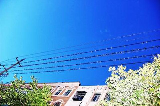 民权火车站附近聚集了近万只小燕子 场面壮观
