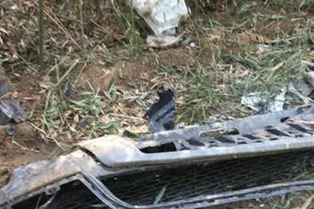 郑州路虎失控撞线杆致副驾男子死亡 警方展开调查