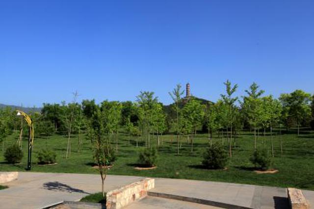 """郑州确定1289个""""双修""""项目 建10至20个大型郊野公园"""