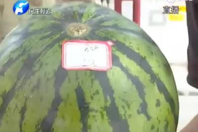 郑州惊险多个无人售卖西瓜点