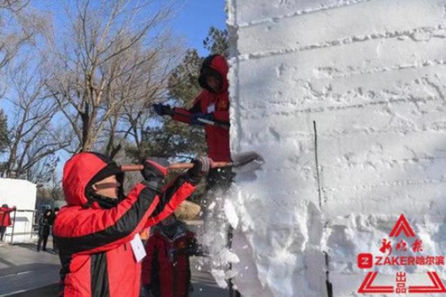 大学生高手太阳岛开铲 坐等4天后雪雕惊艳亮相