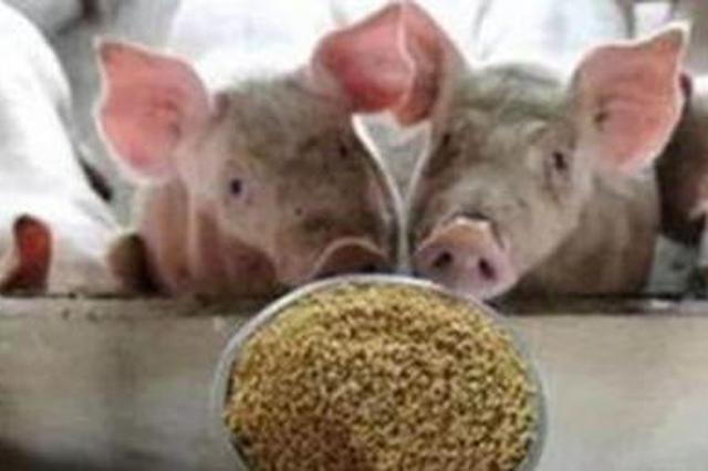 大妈抢学生饭菜喂猪 校方:已限制外来人员入校