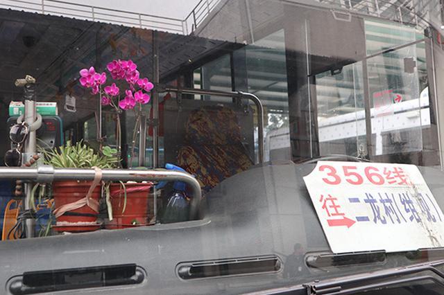 七旬阿姨坚持7年给公交车送花:想为司机们做点事