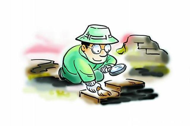 扬州两名考古人员在考古现场被打 江苏文物局介入