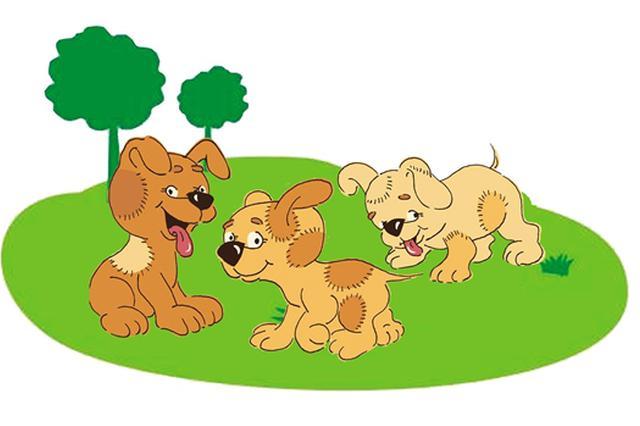 男子称捡狗被以盗窃罪拘留 狗主:男子抱狗被阻止