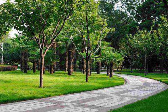 哈尔滨新区避暑城规划15处公园绿地 1处中小