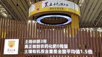 北大仓闪耀国际大米节