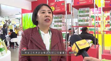 杨晓萍:销售额预计会超10亿元