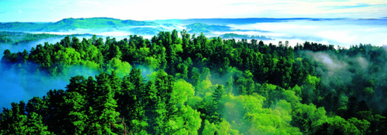 伊春五营国家森林公园