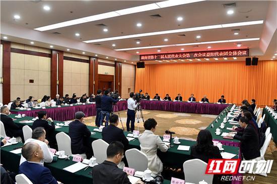 杜家毫与代表们一道审查省人大常委会工作报告。