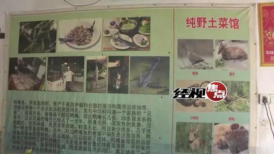 长沙市林业和园林综合执法支队执法人员 李行: