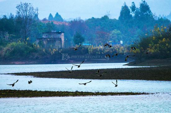 湖南国家湿地公园数量居全国首位