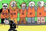 http://n.sinaimg.cn/hunan/transform/250/w150h100/20190719/dea8-hzxsvnp7135525.jpg