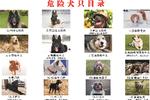 http://n.sinaimg.cn/hunan/transform/250/w150h100/20190816/e7d4-ichcymv9257520.png