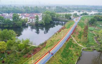 美丽乡村打造特色绿道
