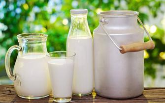 乳制品还是乳饮料 你能分清楚吗?